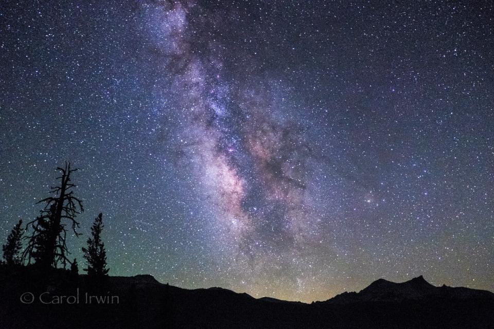 Milky Way above Yosemite 2014 | Carol Irwin